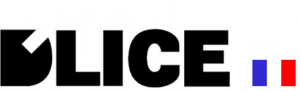 logo-DLICE