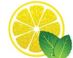 citron_frais-300x240
